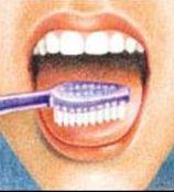 5рисунок-как-правильно-чистить-зубы (1)