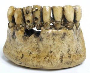 зубы-стоматология-921001